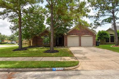 Pearland Single Family Home For Sale: 3103 Summerfield Court