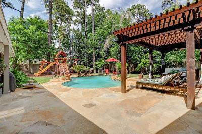 Houston Single Family Home For Sale: 802 Heathcliff Court