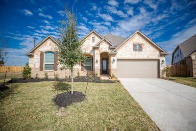 Rosenberg Single Family Home For Sale: 7619 Irby Cobb Boulevard