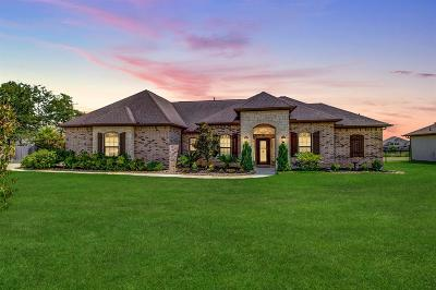 Montgomery Single Family Home For Sale: 11507 Grand Pond Drive