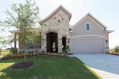 Single Family Home For Sale: 14107 Dunsmore Landing Drive