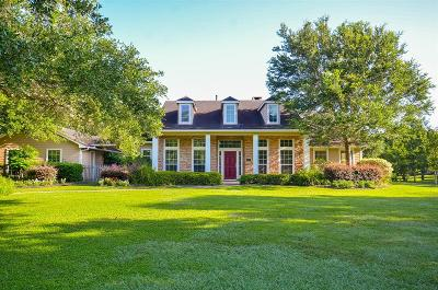 Fulshear Single Family Home For Sale: 4827 Bessies Creek Trace