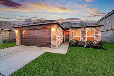 Katy Single Family Home For Sale: 3327 View Valley Trail
