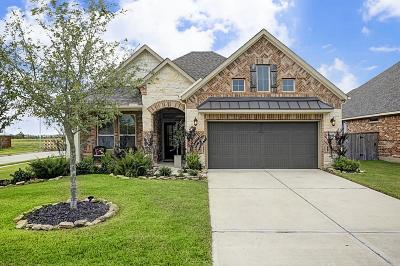 Pearland Single Family Home For Sale: 2811 Baywater Creek Lane