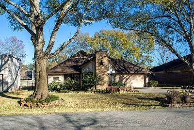 Montgomery Single Family Home For Sale: 28827 S Diamondhead Street