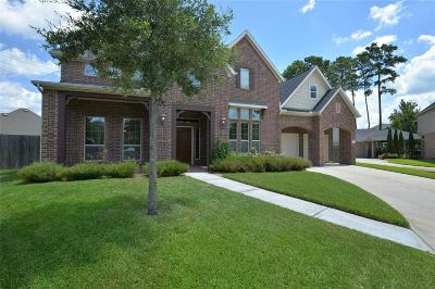 Houston Single Family Home For Sale: 13734 Playa Lucia Court