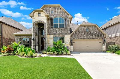 Tomball Single Family Home For Sale: 11119 Roundtable Drive