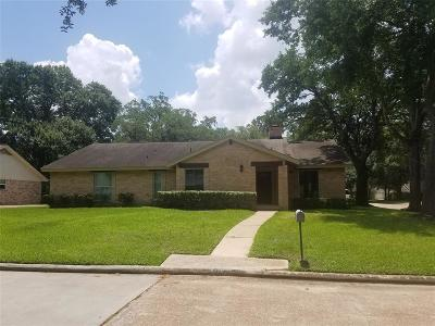 Houston Single Family Home For Sale: 11323 Oak Spring Drive
