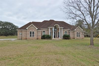 Angleton Single Family Home For Sale: 956 Mill Road