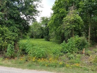 Residential Lots & Land For Sale: 00 N Pine