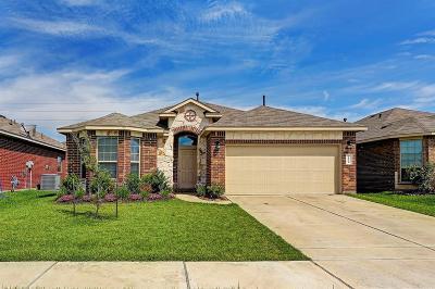 Single Family Home For Sale: 20626 Rimini River Way