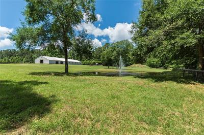 Magnolia Farm & Ranch For Sale: 13128 Noack Road