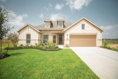 Tomball Single Family Home For Sale: 21511 Albertine Drive