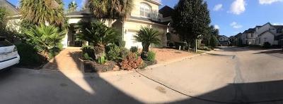 Houston Single Family Home For Sale: 1119 Gardencrest Lane
