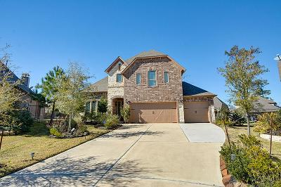 The Woodlands Single Family Home For Sale: 10 Hearthshire