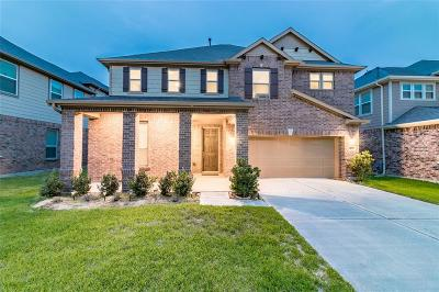 Pearland TX Single Family Home For Sale: $325,000