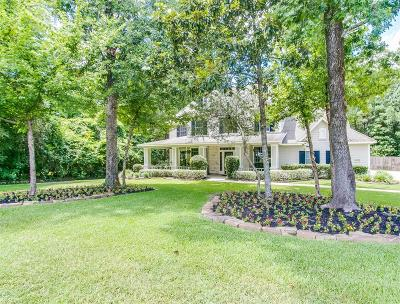 Conroe Single Family Home For Sale: 8973 Willow Springs Lane