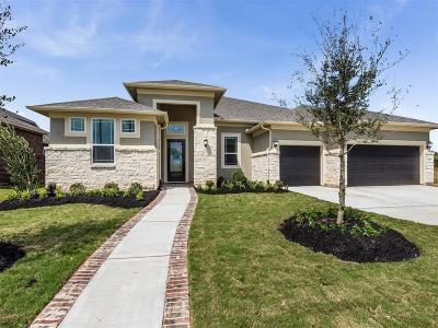 Sugar Land Single Family Home For Sale: 54 Coronal Way