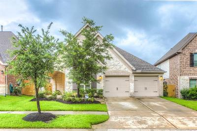 Spring Single Family Home For Sale: 27320 Balson Forest Lane