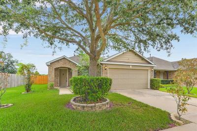 Katy Single Family Home For Sale: 24634 Lakecrest Village Drive
