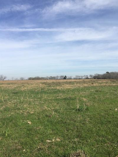 Wharton County Country Home/Acreage For Sale: County Road 462