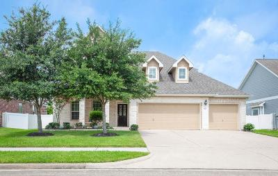 Pearland Single Family Home For Sale: 3412 Old Holly Drive