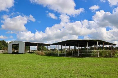 Grimes County Farm & Ranch For Sale: Tbd-21 Fm 1227
