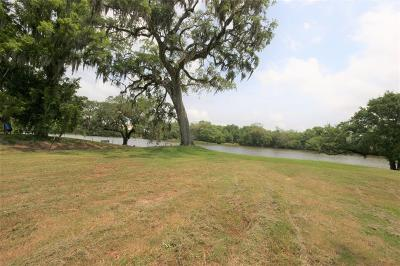 Brazoria Residential Lots & Land For Sale: 3773 County Road 309