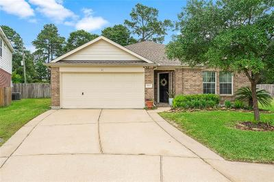 Tomball Single Family Home For Sale: 9703 Haleys Comet Circle