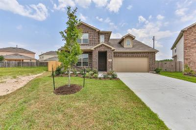 Single Family Home For Sale: 2306 Northern Great White Court