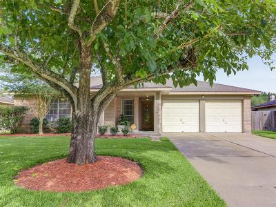 Friendswood Single Family Home For Sale: 702 Stoneledge