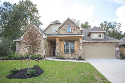 New Caney Single Family Home For Sale: 18820 Collins View Drive