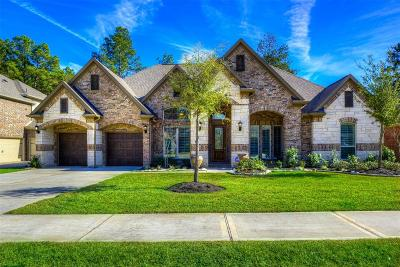 Tomball Single Family Home For Sale: 30726 Raleigh Creek Drive