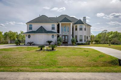 Dickinson Single Family Home For Sale: 7102 S Oak Avenue