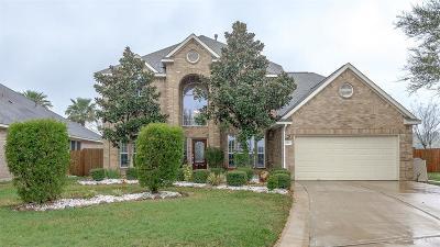 Dickinson Single Family Home For Sale: 2451 Sullivan Lane