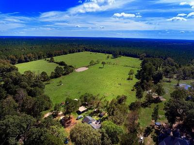 Country Home/Acreage For Sale: 6566 Fm 2666 Road
