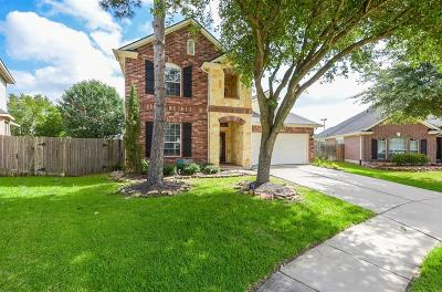 Houston Single Family Home For Sale: 17210 Shallow Lake Lane