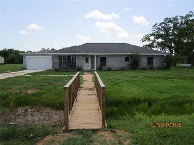 Brazoria Single Family Home For Sale: 19114 County Road 520b
