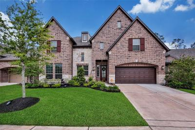Houston Single Family Home For Sale: 17014 Shannon Lake Court