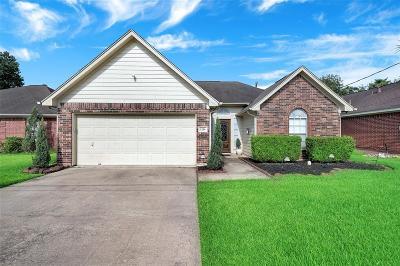 Deer Park Single Family Home For Sale: 1214 Dutch Street