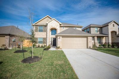 Galveston County Single Family Home For Sale: 615 Liberty Pines Lane