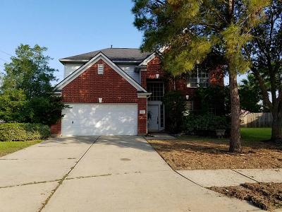 Katy Single Family Home For Sale: 6203 Canyon Top Court