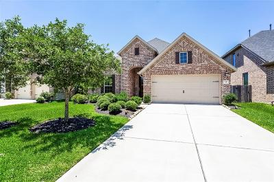 Katy Single Family Home For Sale: 2210 Angel Trumpet Drive