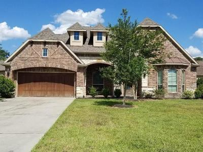 Houston Single Family Home For Sale: 1202 Cornwall Way Way