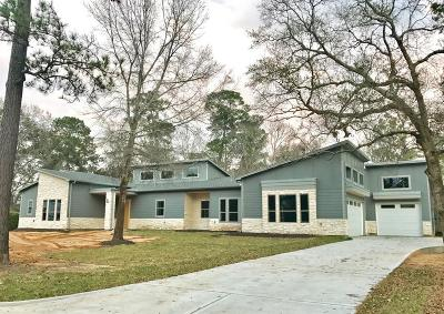 Friendswood Single Family Home For Sale: 409 N Shadowbend Avenue