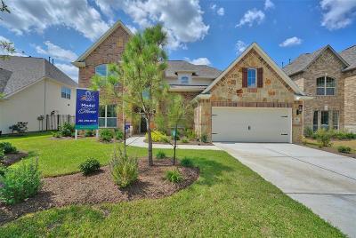 Creekside Park, Creekside Single Family Home For Sale: 91 Birch Canoe Drive