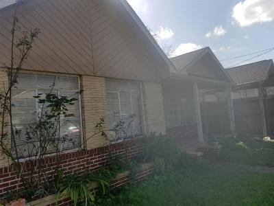 Houston Single Family Home For Sale: 913 Kern Street