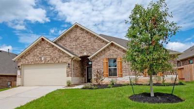 Conroe Single Family Home For Sale: 12265 Emerald Mist Lane