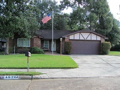 Spring Single Family Home For Sale: 16702 Bonnie Sean Drive