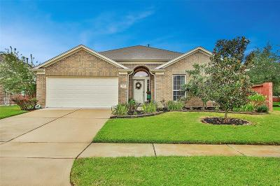 Cypress Single Family Home For Sale: 19502 S Oblong Circle